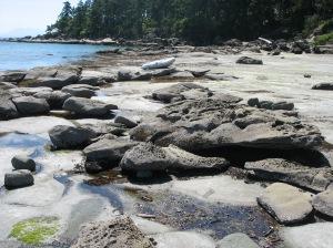 The stunning beach at Tribune Bay