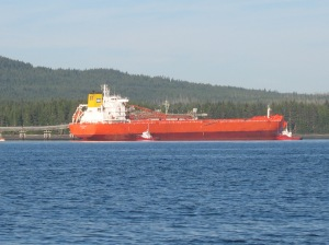 Bulk Carrier for Orca Sand & Gravel Port McNeill