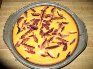 Bev's fabulous plum cheesecake! Needless to say we ate well all week!